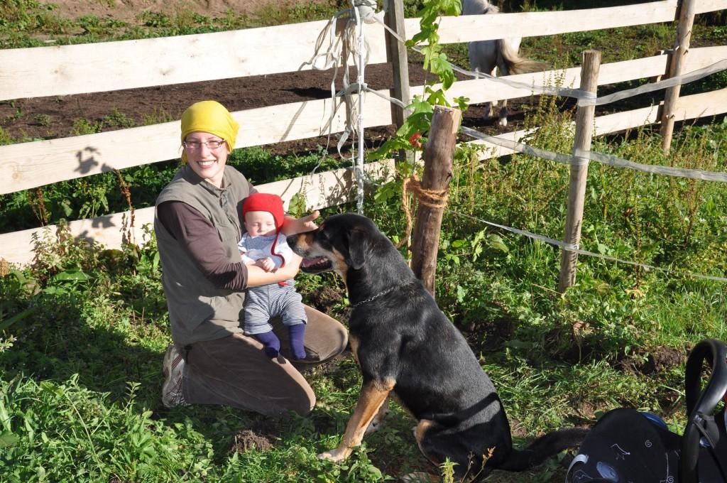Wir pflanzen einen Baum für unseren Amon: Maulbeere (Morus nigra)
